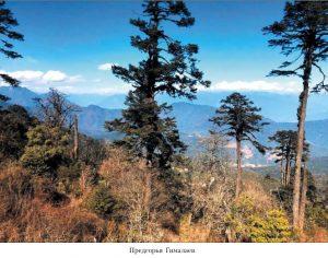 Бутан_05